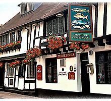 The Three Fishes, Shrewsbury by Peter Sandilands