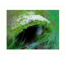Enchanted Forest - The Witch´s Abode Art Print