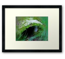 Enchanted Forest - The Witch´s Abode Framed Print