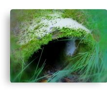 Enchanted Forest - The Witch´s Abode Canvas Print