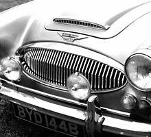 1964 Austin-Healey 3000 Sports Car by Peter Sandilands