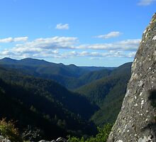 The Rock at Leven Canyon by JuliaWright