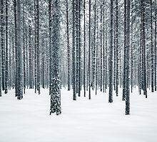 Between The Lines by Mikko Lagerstedt