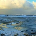 Ice and Frozen Lake by ienemien