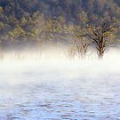 Arthurs Lake by helmutk