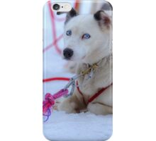 Siberian Blue iPhone Case/Skin