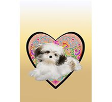 Cuter Puppy Valentine tablet  Photographic Print