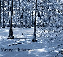 Merry Christmas by Bonnie T.  Barry