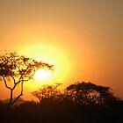 Sunset by JeZzLe