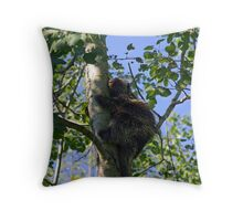 Porcupine up a tree Throw Pillow