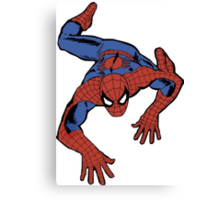 My spidey senses are tingling Canvas Print