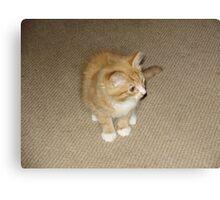 Garfield Canvas Print