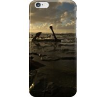Wreck Beach iPhone Case/Skin