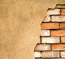 THE WALL by Tsitra