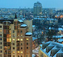 Winter Vinnitsa 11 by fine
