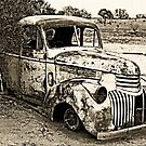 Abandoned Chevrolet by Marilyn Harris