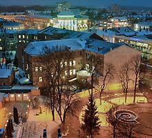 Winter Vinnitsa 12 by fine