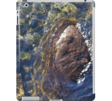 water from the stream iPad Case/Skin