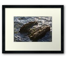 water from the stream Framed Print