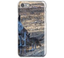 Mob At The Old Mill Dam iPhone Case/Skin