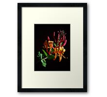 Laugh With Me Framed Print
