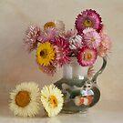 Everlasting flowers in a vase   by eddiej