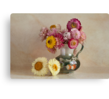 Everlasting flowers in a vase   Canvas Print