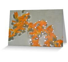 Calendula Sparkles Greeting Card