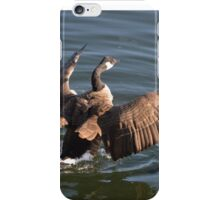 Canada Goose iPhone Case/Skin