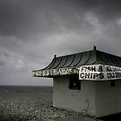 Too Cold For Hot Food by Chris Wood