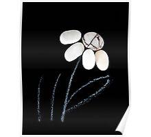pebble flower  Poster