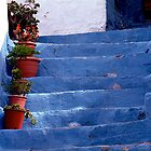 The blue steps, Andalucia by Fred Shively
