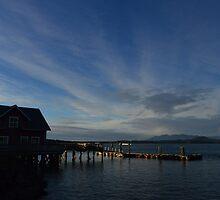 Tofino, British Columbia by Jeff Ashworth & Pat DeLeenheer