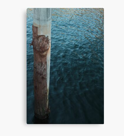 Bark & Water Canvas Print