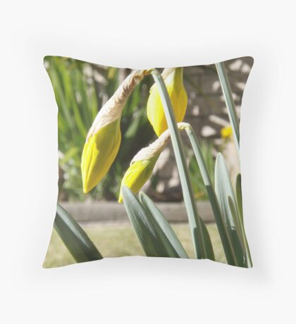 daffodils - spring is here - almost. Throw Pillow