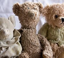The tatty bears by Lisa Wilson