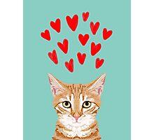 Mackenzie - Orange Tabby Cute Valentines Day Kitten Girly Retro Cat Art cell phone Photographic Print