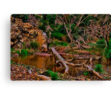 """The Billabong"" Canvas Print"