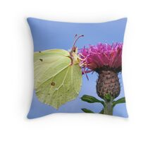Brimstone 1 Throw Pillow