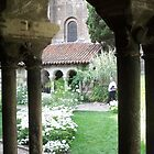 Beautiful cloister by daffodil