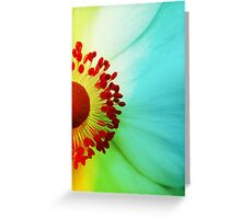 Colour Wheel Greeting Card