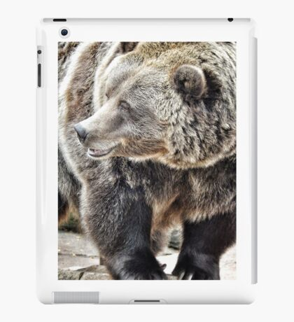 Photo of Fluff iPad Case/Skin