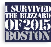 Must-Have 'I survived the Blizzard of 2015 Boston' T-shirts, Hoodies, Accessories and Gifts Canvas Print