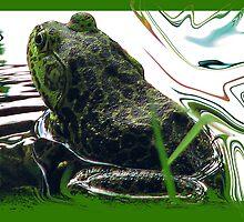 Mr. Bullfrog by George  Link