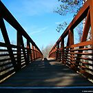 FOOTBRIDGE. by KevinKelly