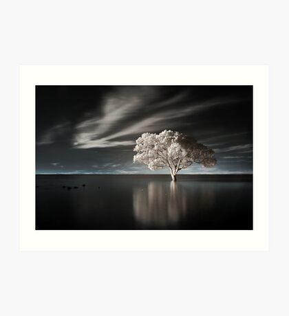 Tree in Water Art Print