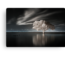 Tree in Water Canvas Print
