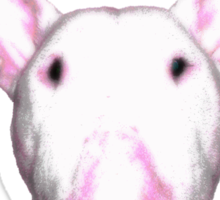 Kiss-a-Bull Sticker