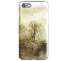 Hidden Heart of a Winter Dream. iPhone Case/Skin