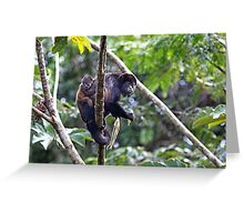 Howler monkey and baby Greeting Card